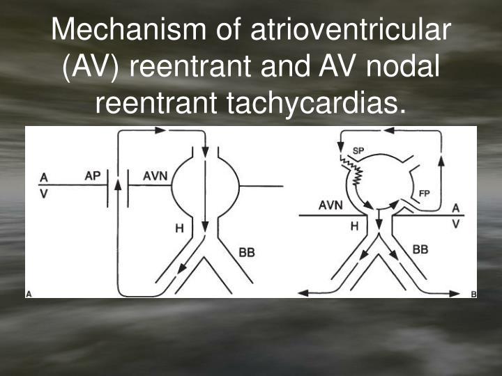 Mechanism of