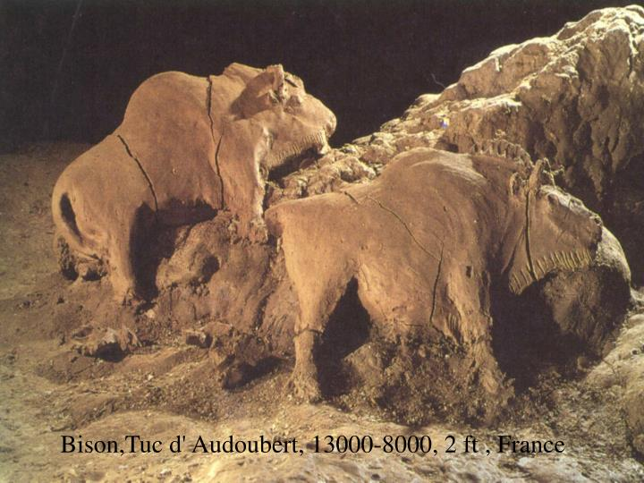 Bison,Tuc d' Audoubert, 13000-8000, 2 ft , France