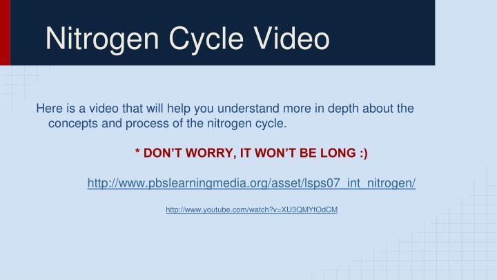 Nitrogen Cycle Video