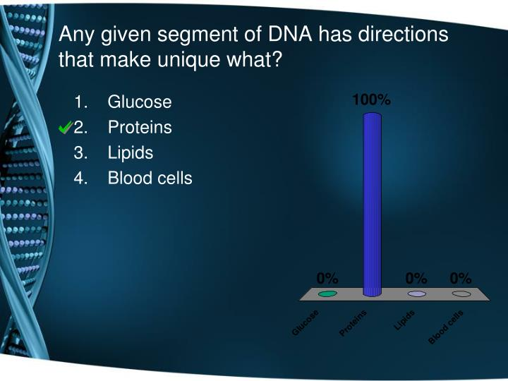 Any given segment of DNA has directions that make unique what?