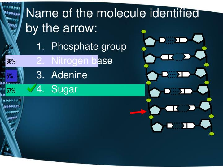 Name of the molecule identified by the arrow: