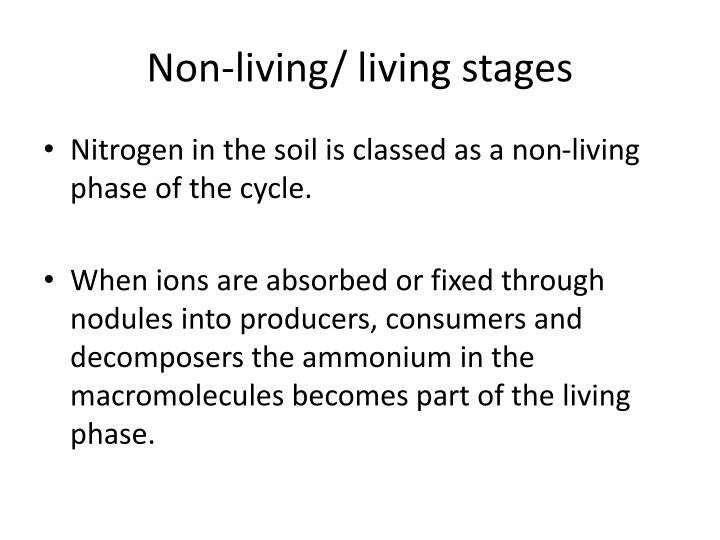 Non-living/ living stages