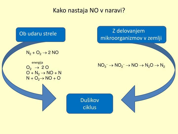 Kako nastaja NO v naravi?