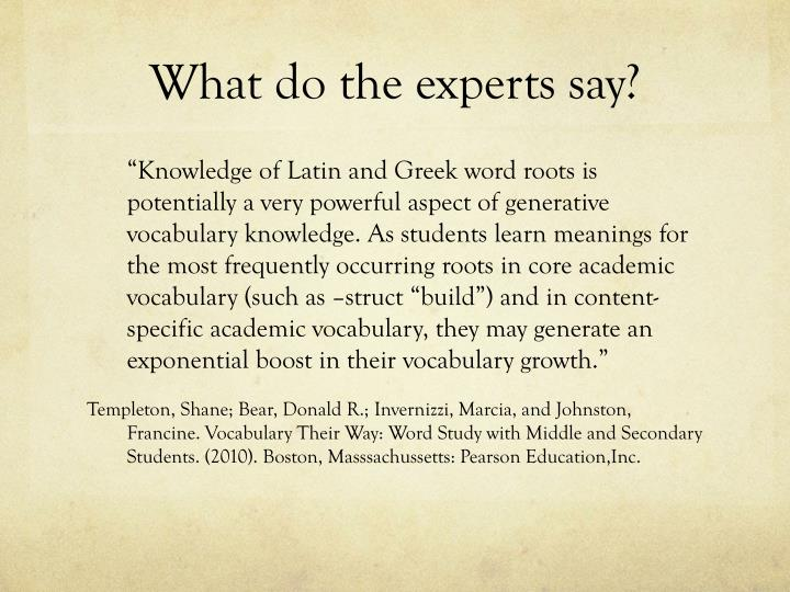 What do the experts say?
