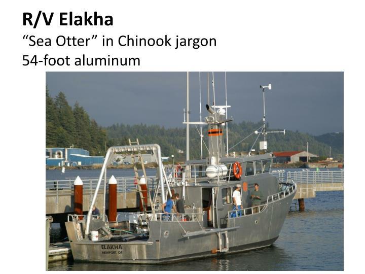 R/V Elakha