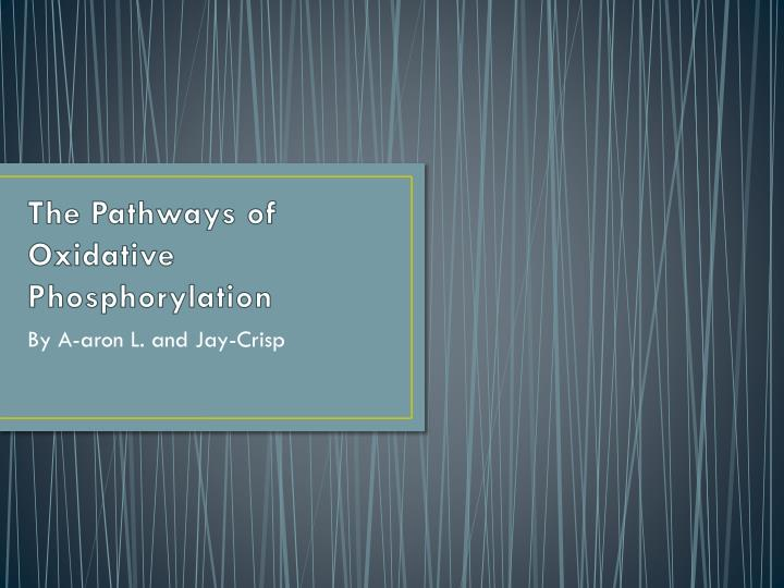 The Pathways of Oxidative
