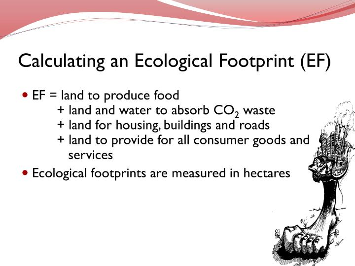 Calculating an Ecological Footprint (EF)