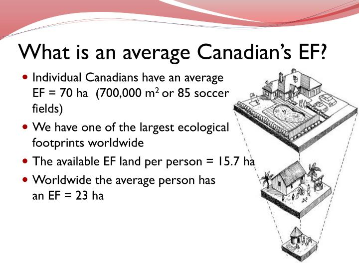 What is an average Canadian's EF?