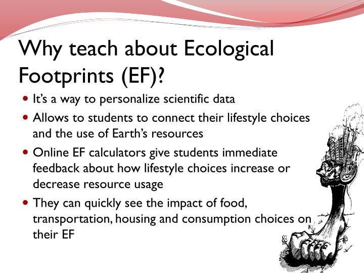 Why teach about ecological footprints ef