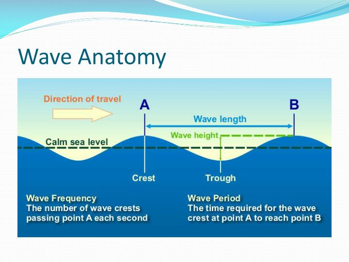 Wave Anatomy