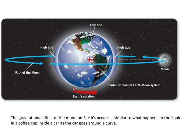 The gravitational effect of the moon on Earth's oceans is similar to what happens to the liquid