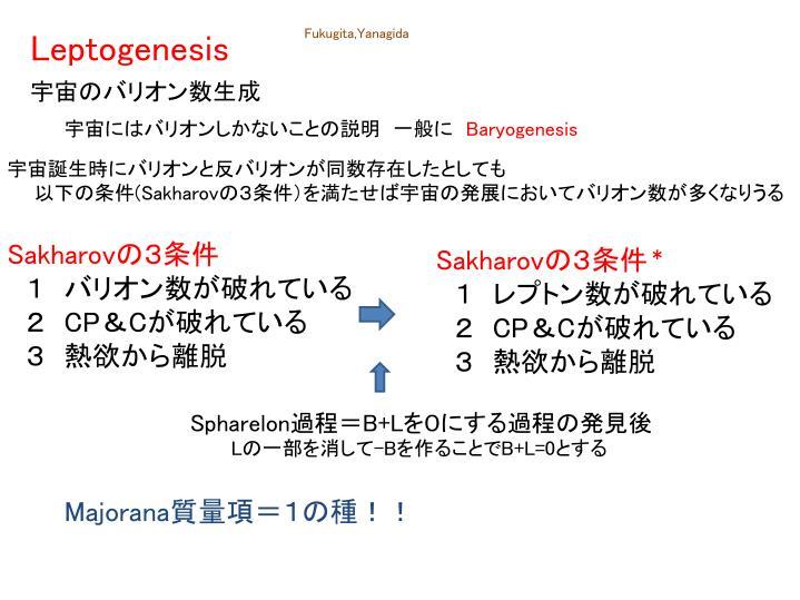 Leptogenesis