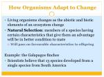 how organisms adapt to change