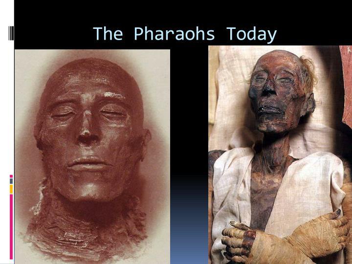 The Pharaohs Today