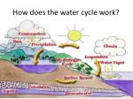 how does the water cycle work
