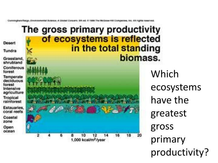 Which ecosystems have the greatest gross primary productivity?