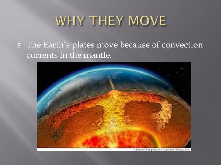 WHY THEY MOVE