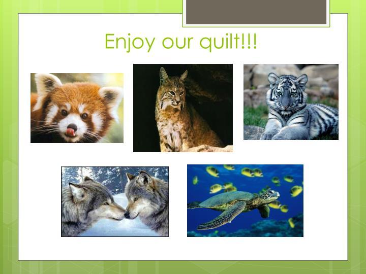 Enjoy our quilt!!!