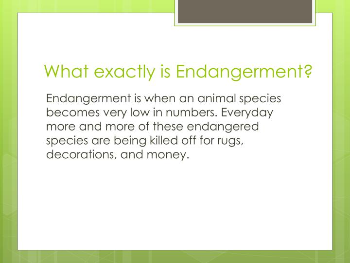 What exactly is Endangerment?
