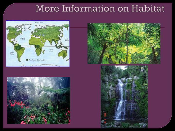 More Information on Habitat