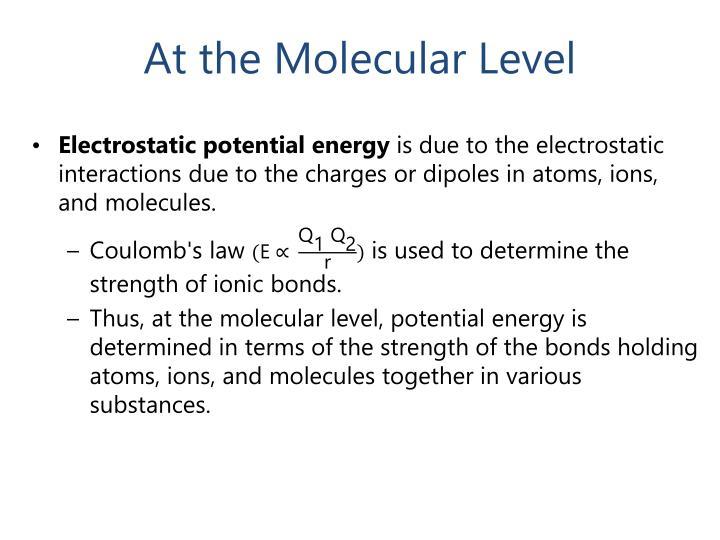 At the Molecular Level
