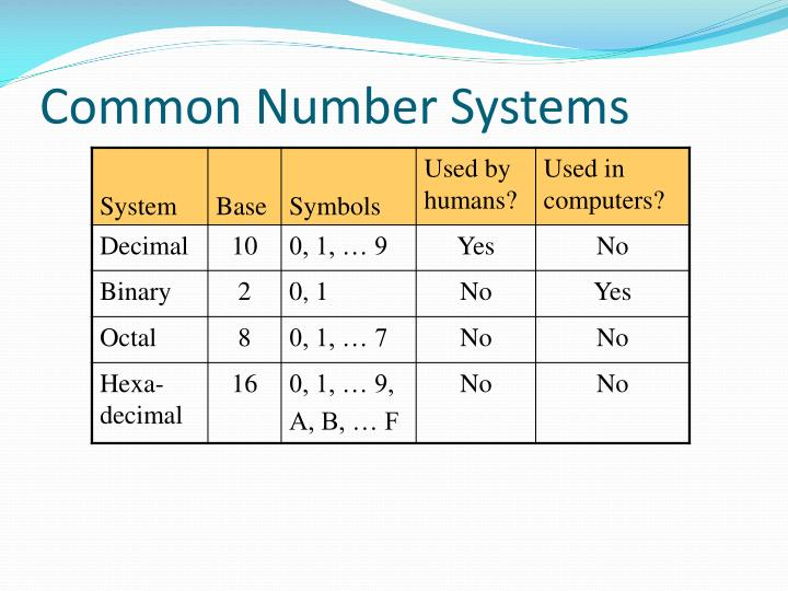 Common Number Systems