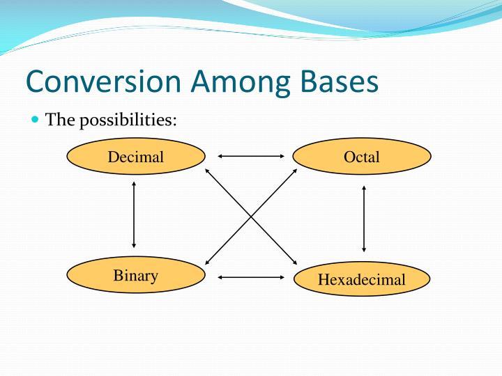 Conversion Among Bases