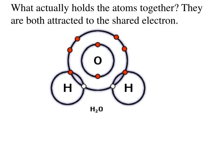 What actually holds the atoms together? They are both attracted to the shared electron.