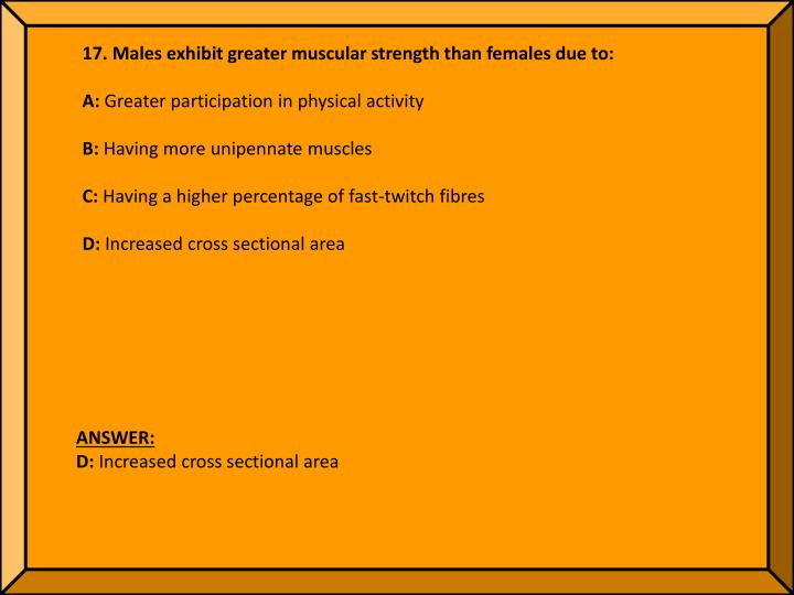 17. Males exhibit greater muscular strength than females due to: