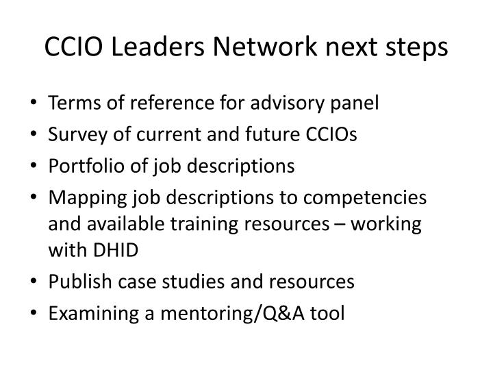 CCIO Leaders Network next steps
