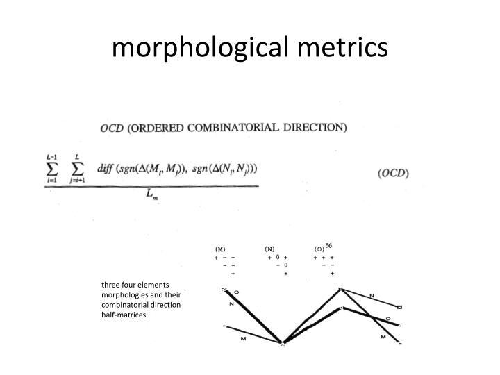 morphological metrics