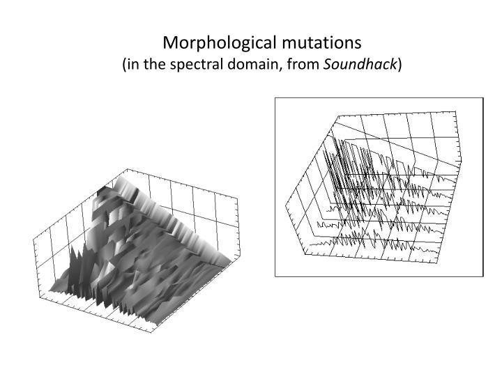 Morphological mutations
