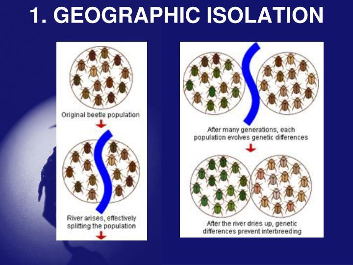 1. GEOGRAPHIC ISOLATION