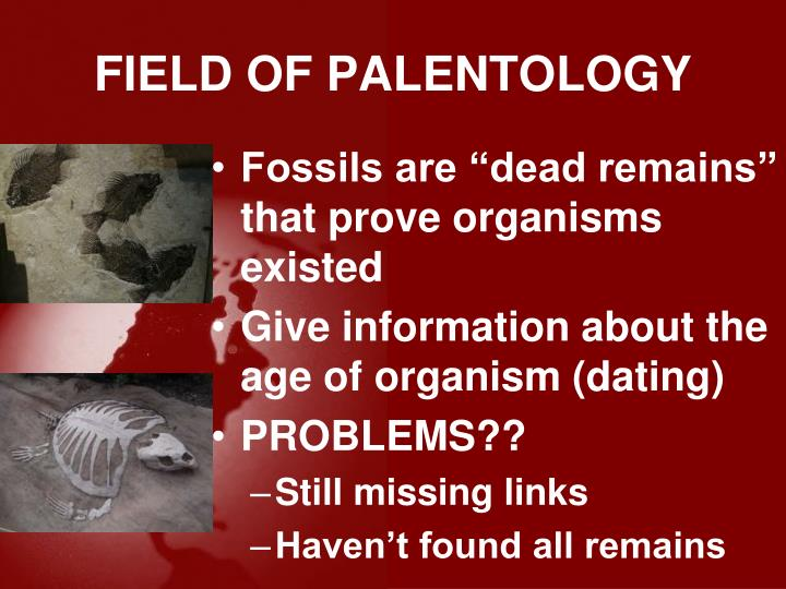FIELD OF PALENTOLOGY