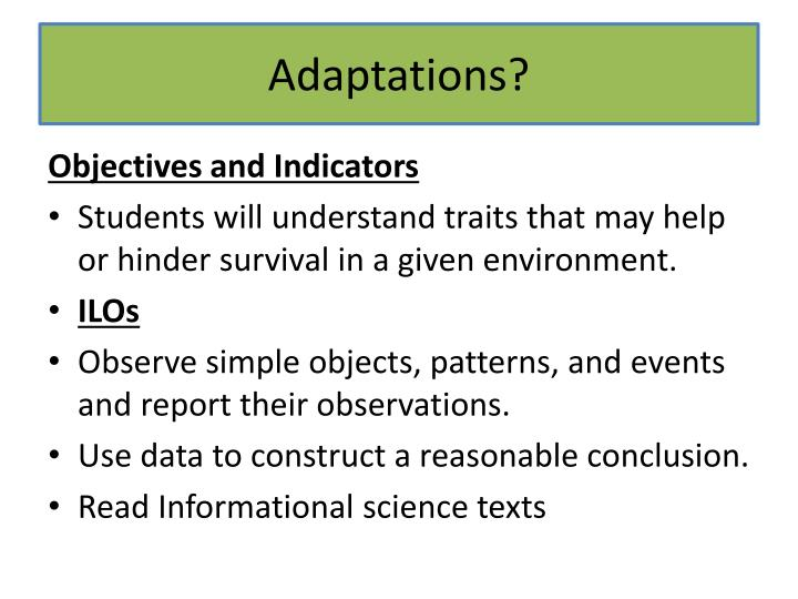Adaptations?