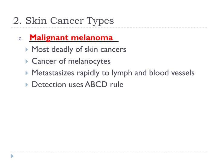 2. Skin Cancer Types
