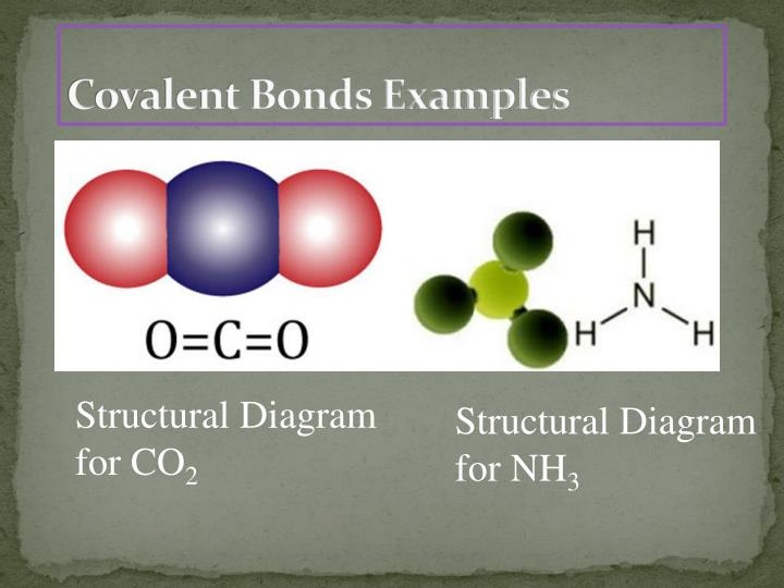 Covalent Bonds Examples