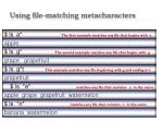 using file matching metacharacters