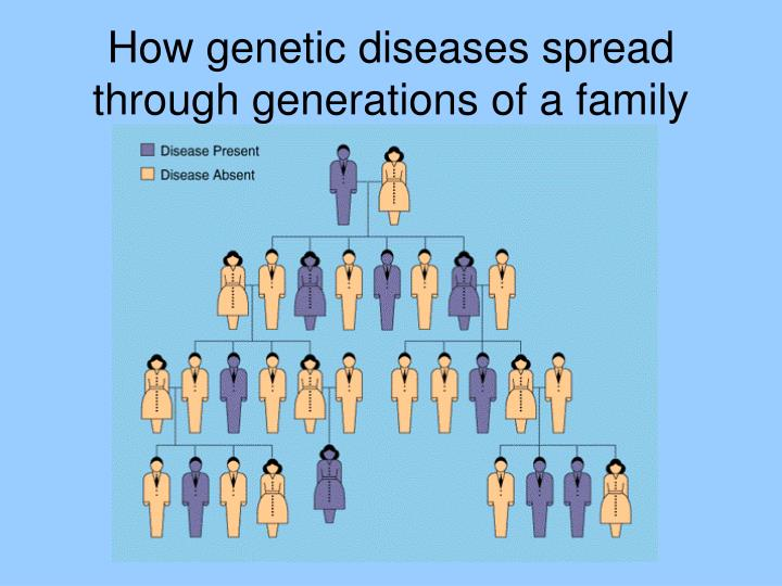 How genetic diseases spread through generations of a family