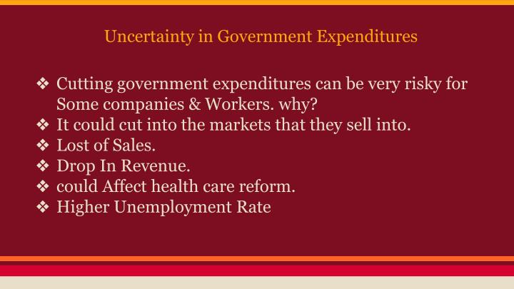 Uncertainty in Government Expenditures