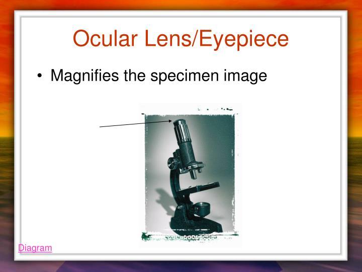 Ocular Lens/Eyepiece
