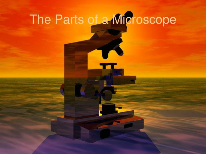 The Parts of a Microscope