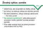 ivotn cyklus zombie