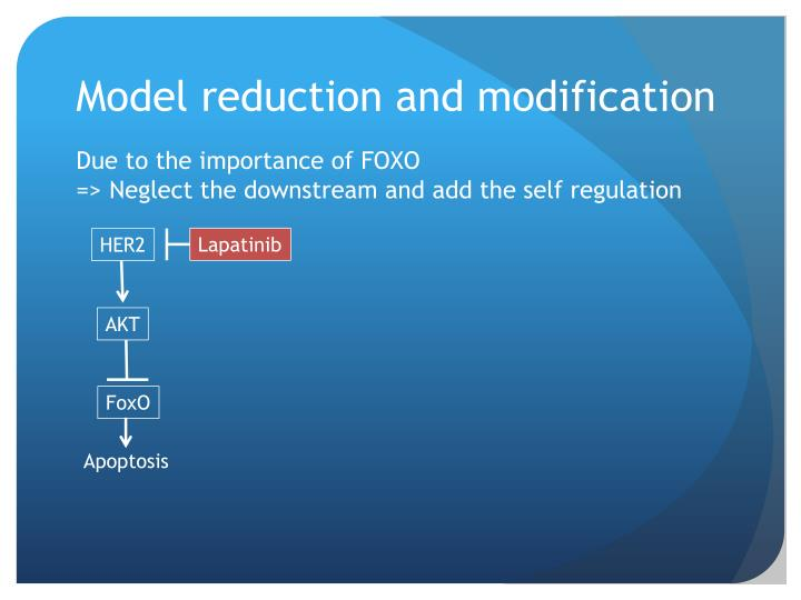 Model reduction and modification