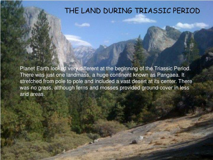 THE LAND DURING TRIASSIC PERIOD