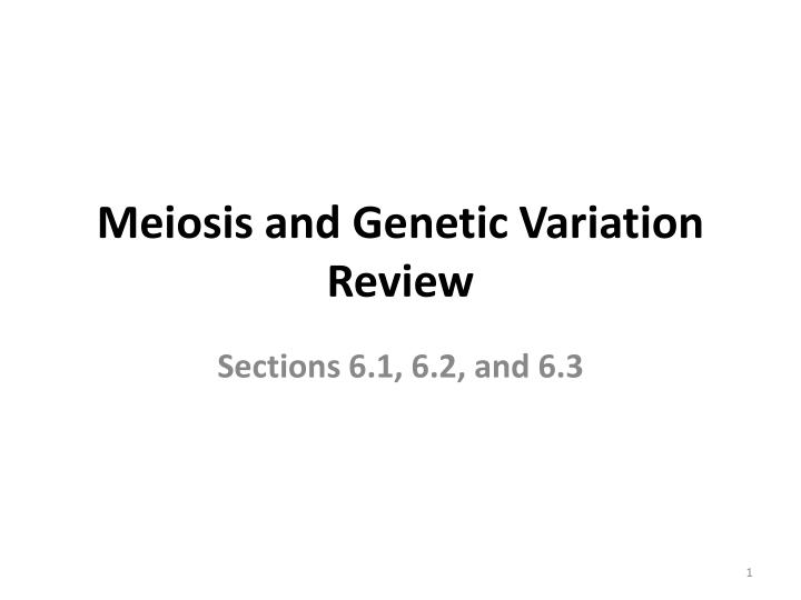 Meiosis and Genetic Variation Review