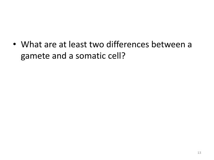 What are at least two differences between a gamete and a somatic cell?