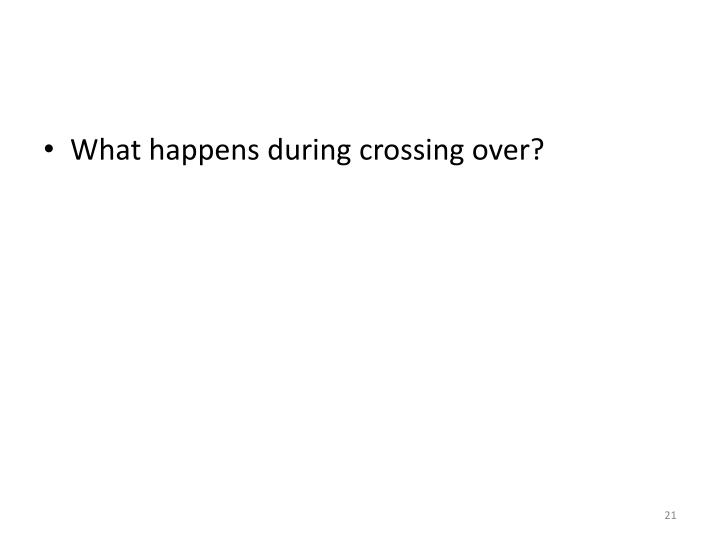 What happens during crossing over?