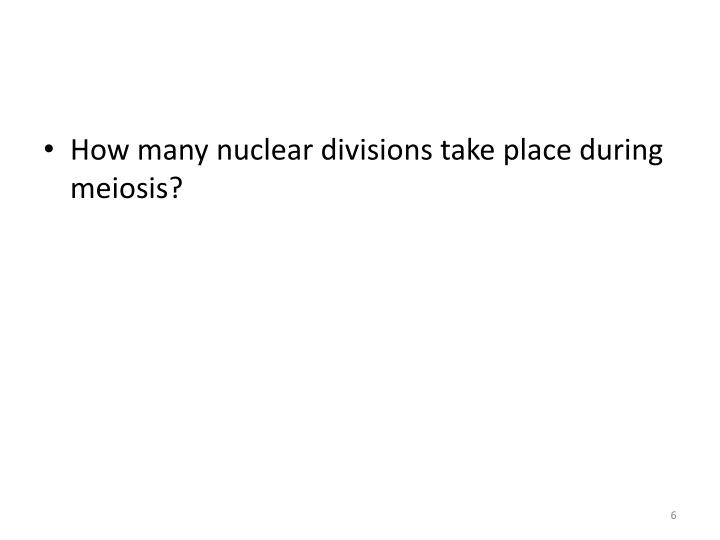 How many nuclear divisions take place during meiosis?