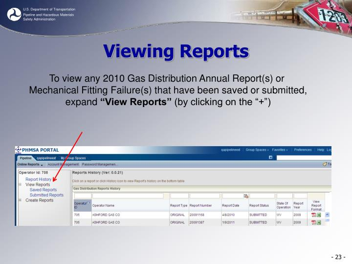 Viewing Reports